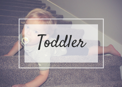 Toddler blog